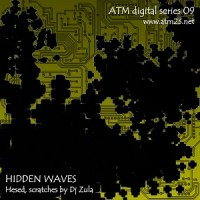 Hidden Waves (atmds09)